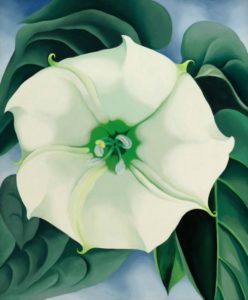 Georgia O'Keeffe 1887-1986 Jimson Weed/White Flower No. 1 1932 Oil paint on canvas 48 x 40 inches Crystal Bridges Museum of American Art, Arkansas, USA © 2016 Georgia O'Keeffe Museum/DACS, London Photography by Edward C. Robison III